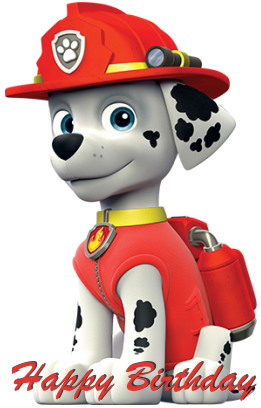 paw patrol birthday Pages