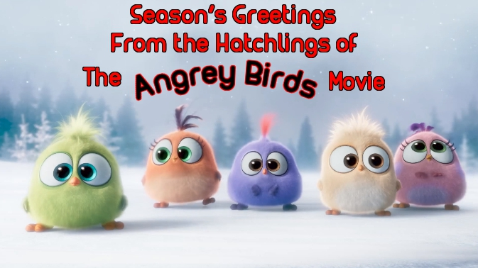 the angry bird hatchlings
